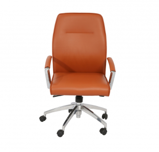 Dolphin Medium Back Chair