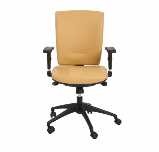 Rex Medium Back Chair