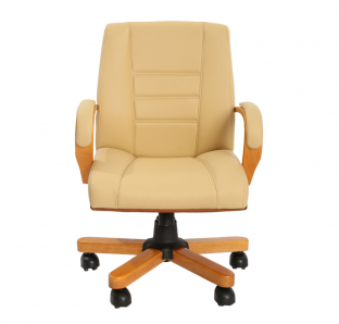 Fabya Medium Back Chair